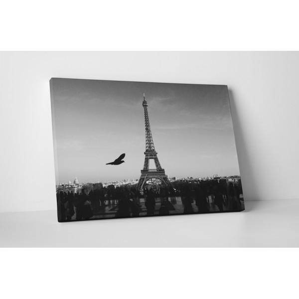 Čiernobiela Eiffelova veža