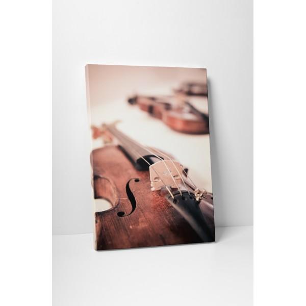 Husle Stradivarius