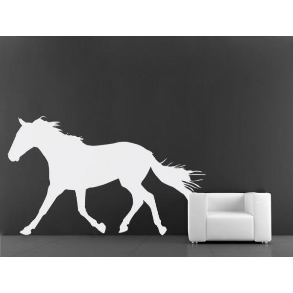 Divoký kôň