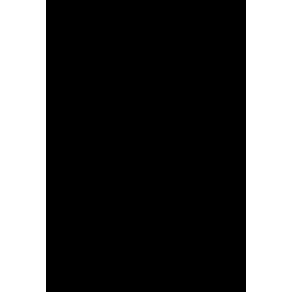 Jednotlivý symbol