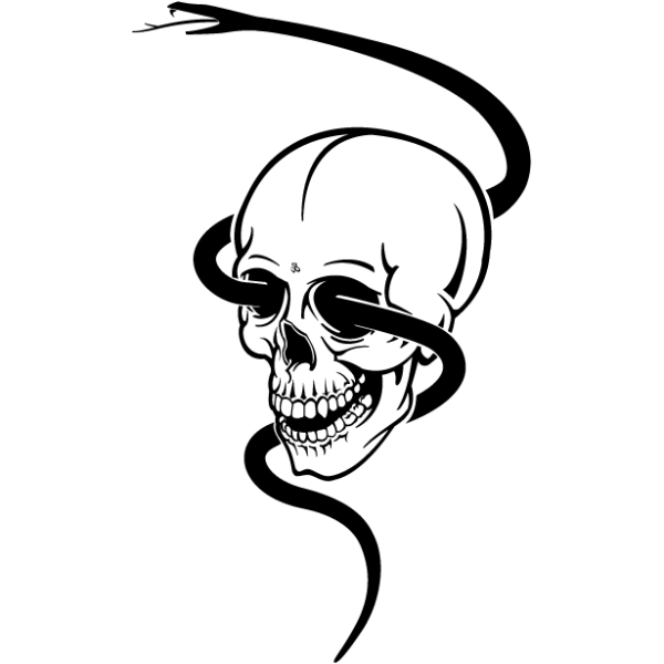 Lebka a had