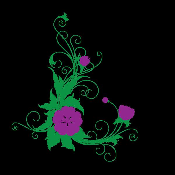 Kvetina Hawaii (viacfarebná)